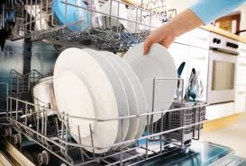 Dishwasher Technician Georgina